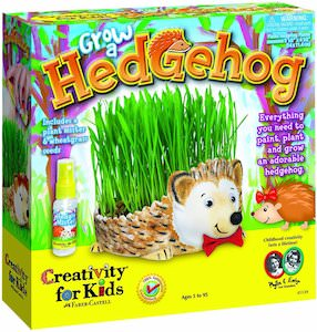 Hedhog Chia pet like planter