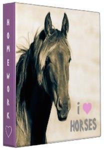 Avery Horse binder