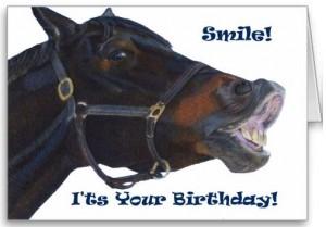 Smiling Horse Birthday Card