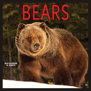 2016 Bears Wall Calendar