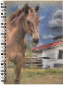 Horse and Barn Spiral Notebook