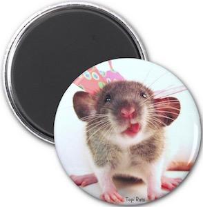 Silly Rat Fridge Magnet