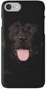 Black Labrador iPhone Case